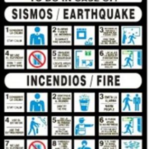 SEÑAL MODELO 031 SISMO-INCENDIO ESPAÑOL/INGLES